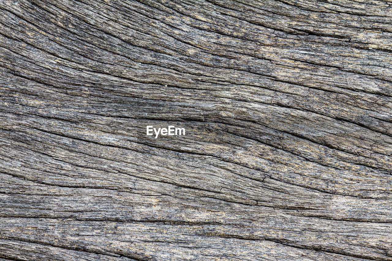 backgrounds, textured, full frame, pattern, close-up, no people, wood - material, rough, brown, wood grain, natural pattern, cracked, wood, nature, day, outdoors, extreme close-up, macro, tree, gray, textured effect, clean