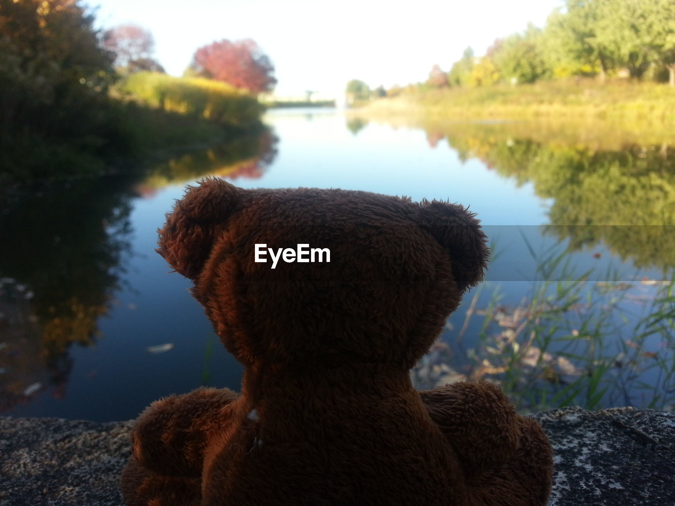 Close-up of teddy bear by water against sky