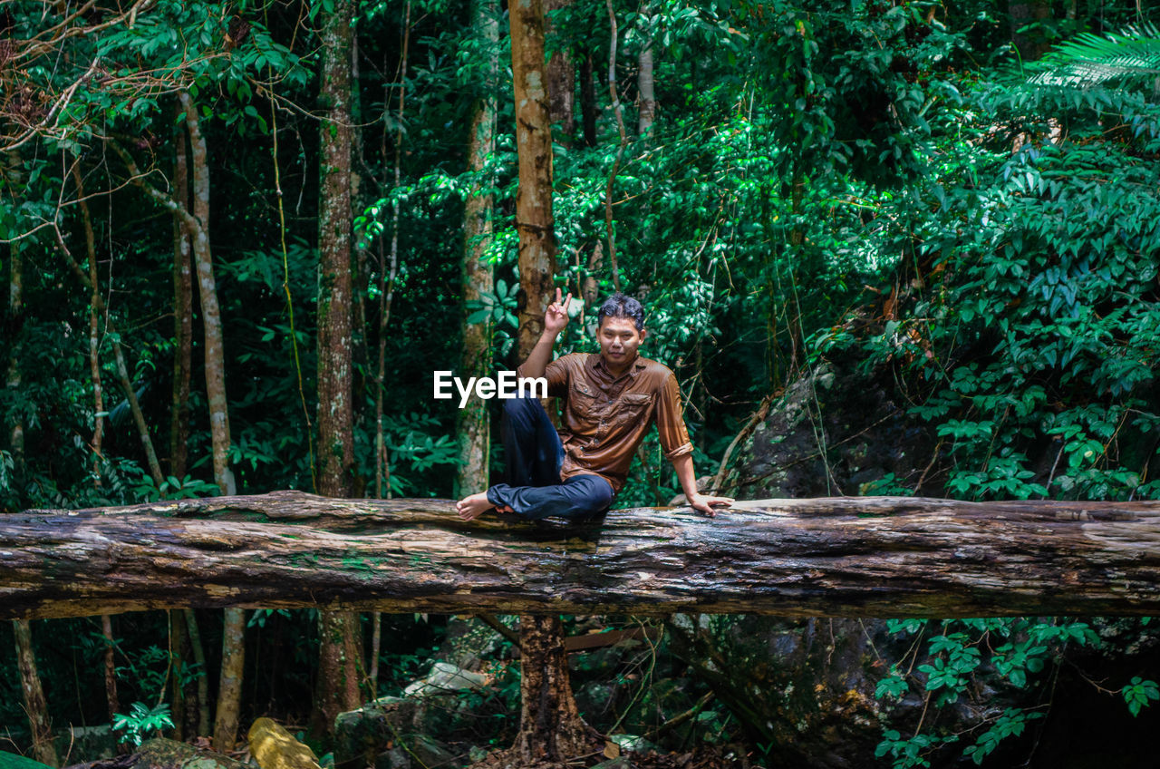 Portrait of man sitting on tree trunk in forest