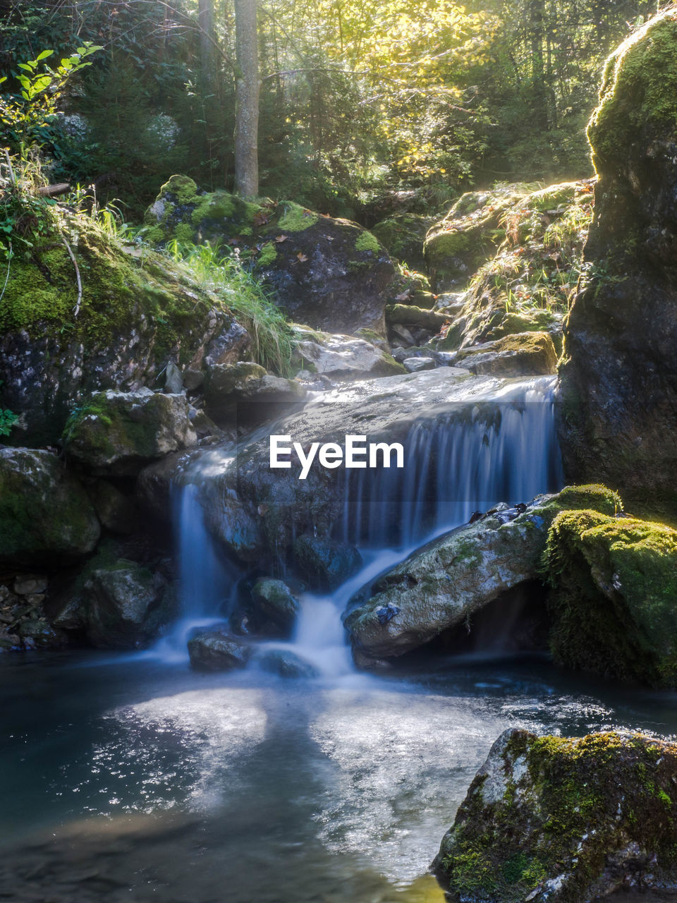 waterfall, water, rock, flowing water, rock - object, scenics - nature, solid, forest, beauty in nature, motion, long exposure, tree, nature, blurred motion, plant, flowing, day, land, environment, no people, outdoors, power in nature, rainforest, falling water, stream - flowing water