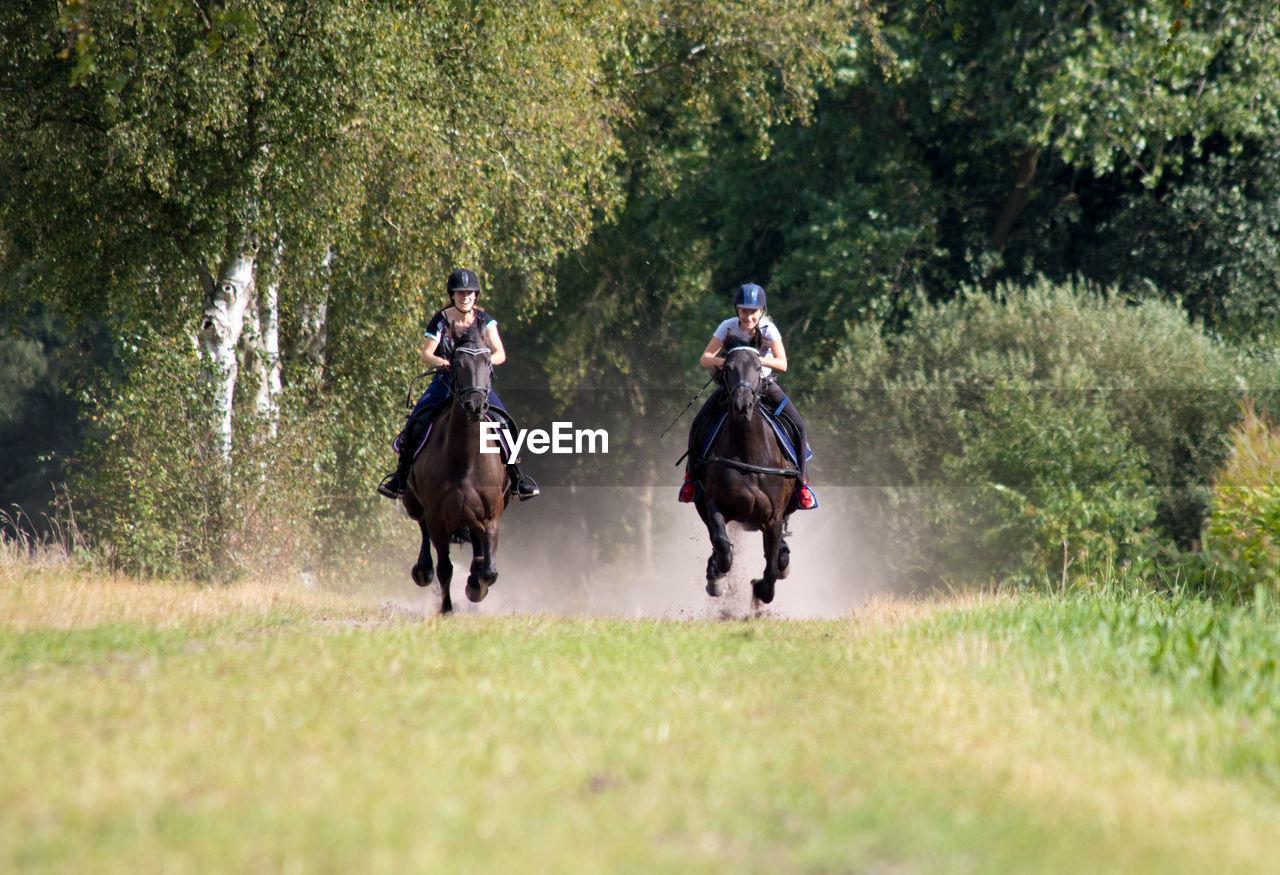 Friends riding horses at park