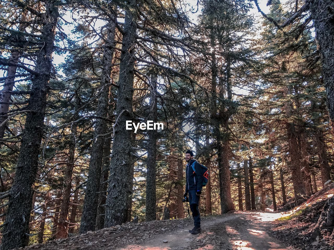 tree, forest, plant, full length, one person, real people, leisure activity, lifestyles, land, nature, walking, woodland, rear view, trunk, tree trunk, day, beauty in nature, growth, direction, outdoors