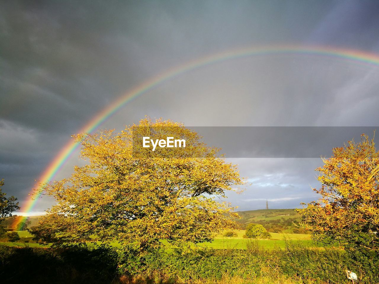 rainbow, double rainbow, beauty in nature, nature, idyllic, scenics, tranquility, tranquil scene, tree, no people, weather, multi colored, cloud - sky, day, sky, outdoors, spectrum, natural phenomenon, growth