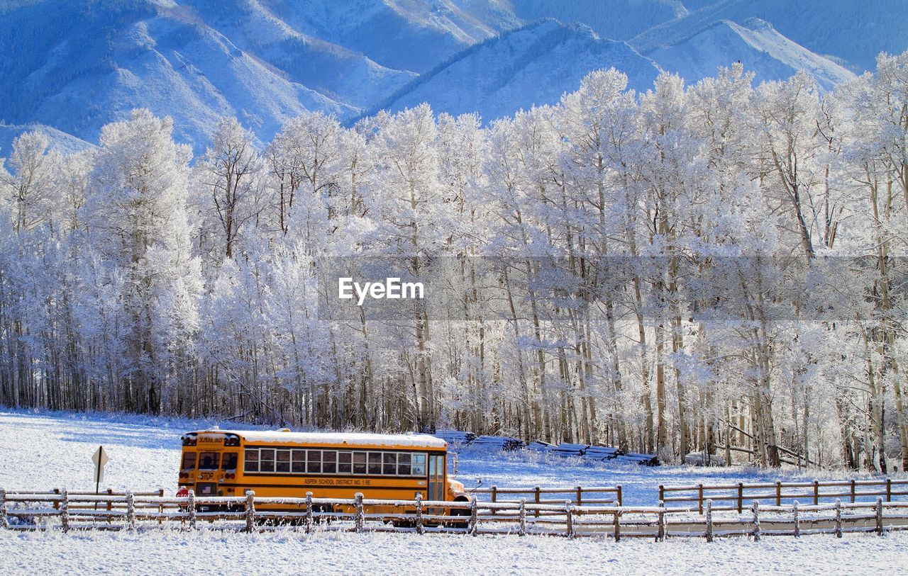 School Bus Passing Through Snowy Landscape And Trees