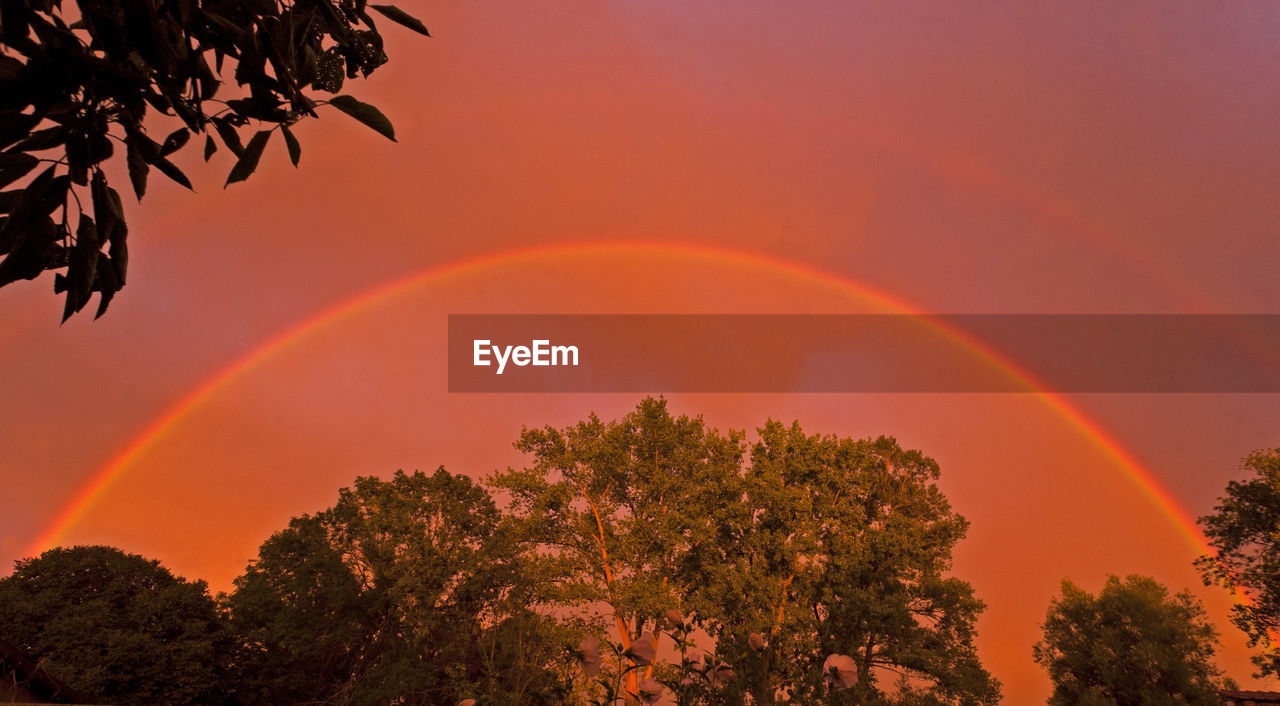 tree, beauty in nature, rainbow, plant, sky, sunset, orange color, scenics - nature, no people, idyllic, nature, tranquility, double rainbow, tranquil scene, silhouette, outdoors, natural phenomenon, growth, low angle view