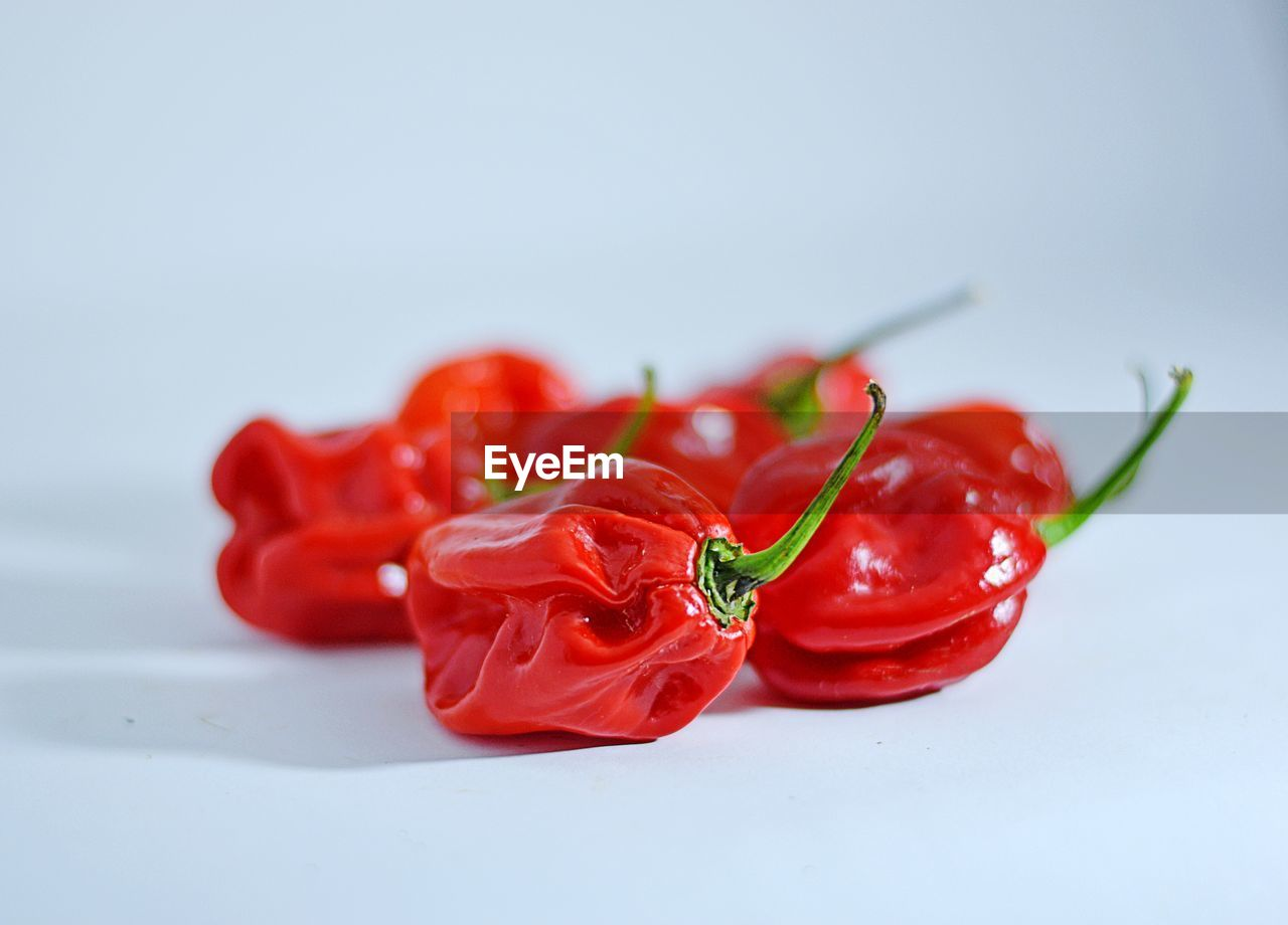 red, freshness, close-up, studio shot, pepper, indoors, food, food and drink, still life, vegetable, white background, no people, chili pepper, spice, focus on foreground, red chili pepper, plant, selective focus, copy space, healthy eating