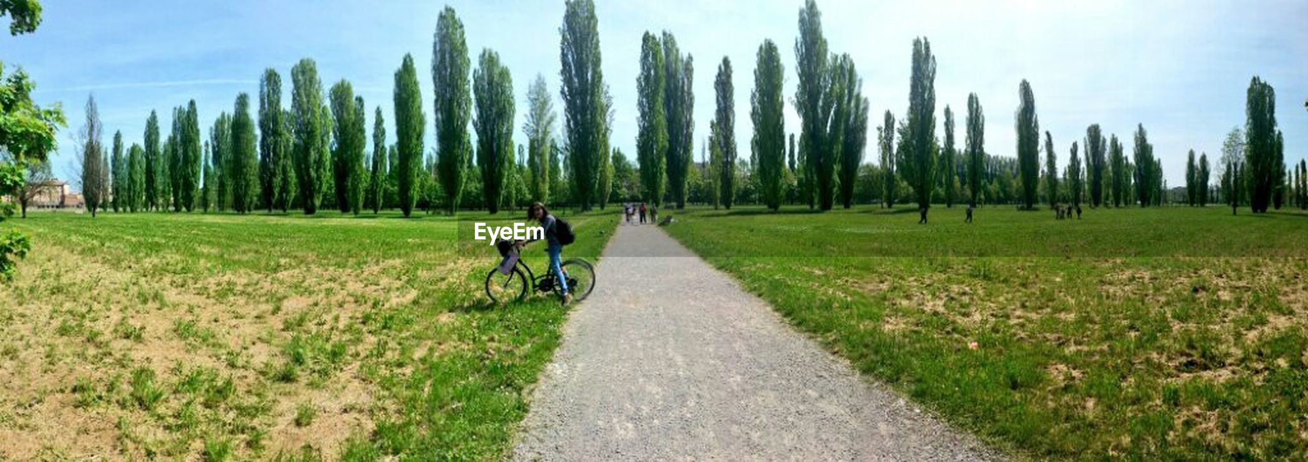 grass, field, the way forward, green color, agriculture, diminishing perspective, growth, rural scene, sky, landscape, vanishing point, transportation, in a row, bicycle, walking, grassy, tree, nature
