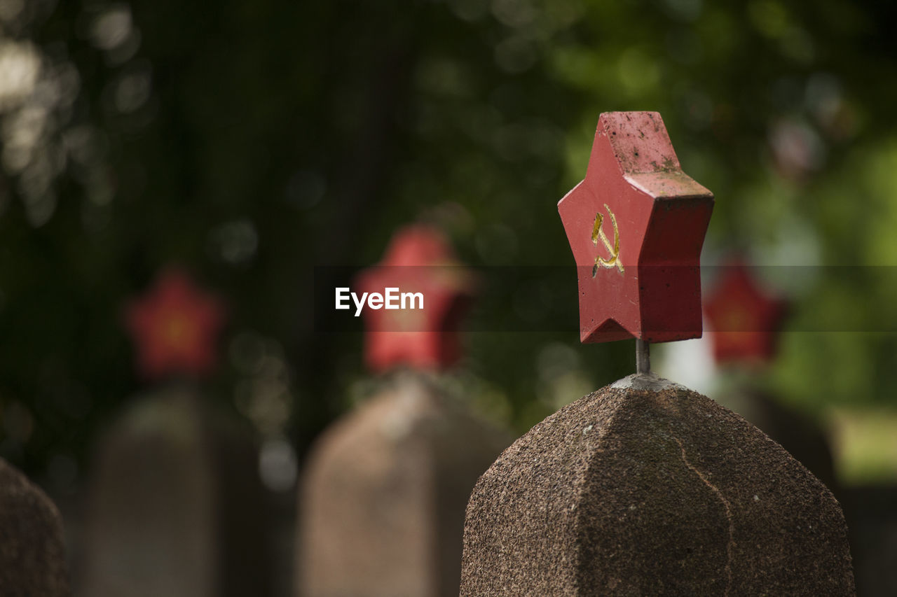 focus on foreground, no people, close-up, solid, day, cemetery, stone, grave, nature, stone material, religion, tombstone, outdoors, art and craft, stone - object, creativity, belief, spirituality, human representation