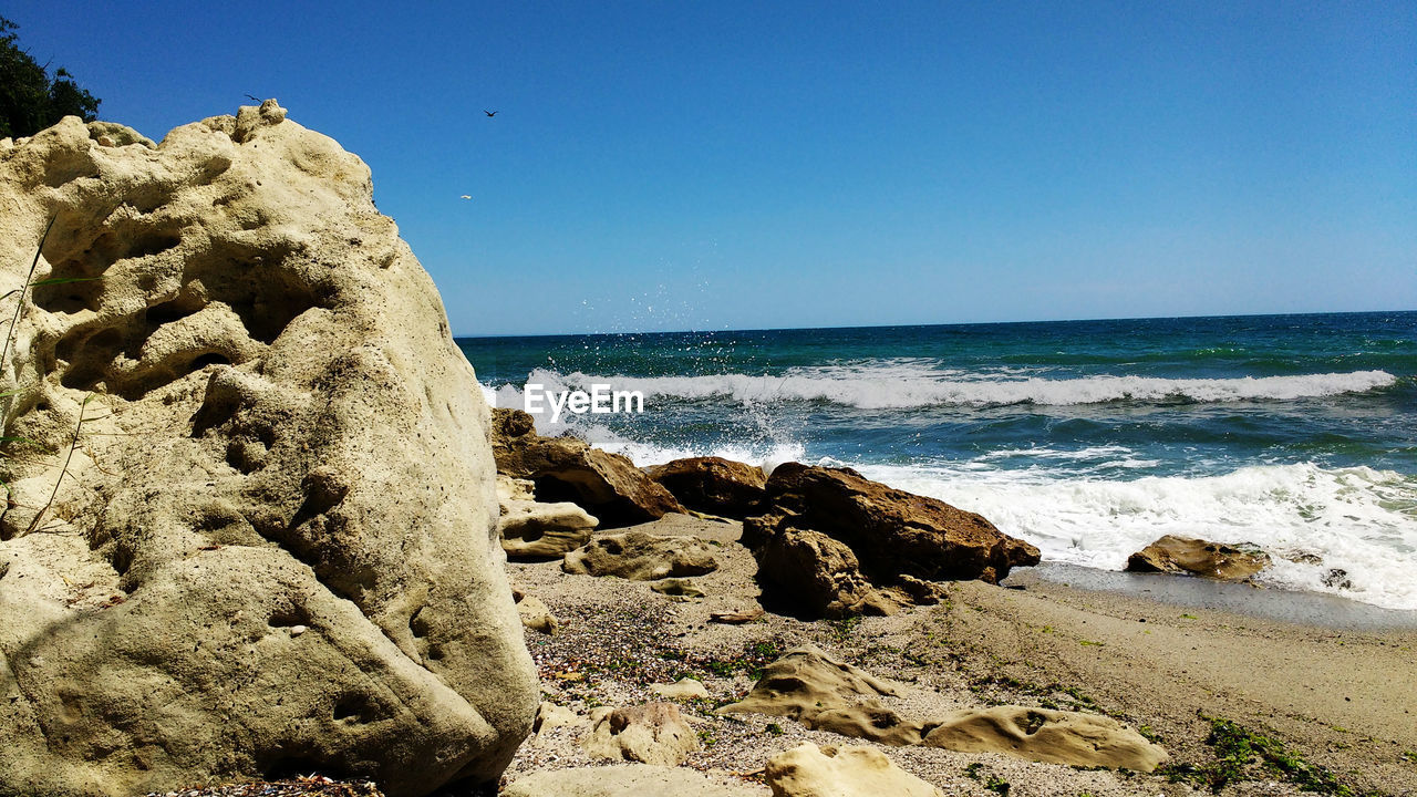 sea, horizon over water, nature, beauty in nature, rock - object, beach, clear sky, scenics, water, tranquil scene, tranquility, blue, day, outdoors, sand, no people, wave, sky, bird, animal themes