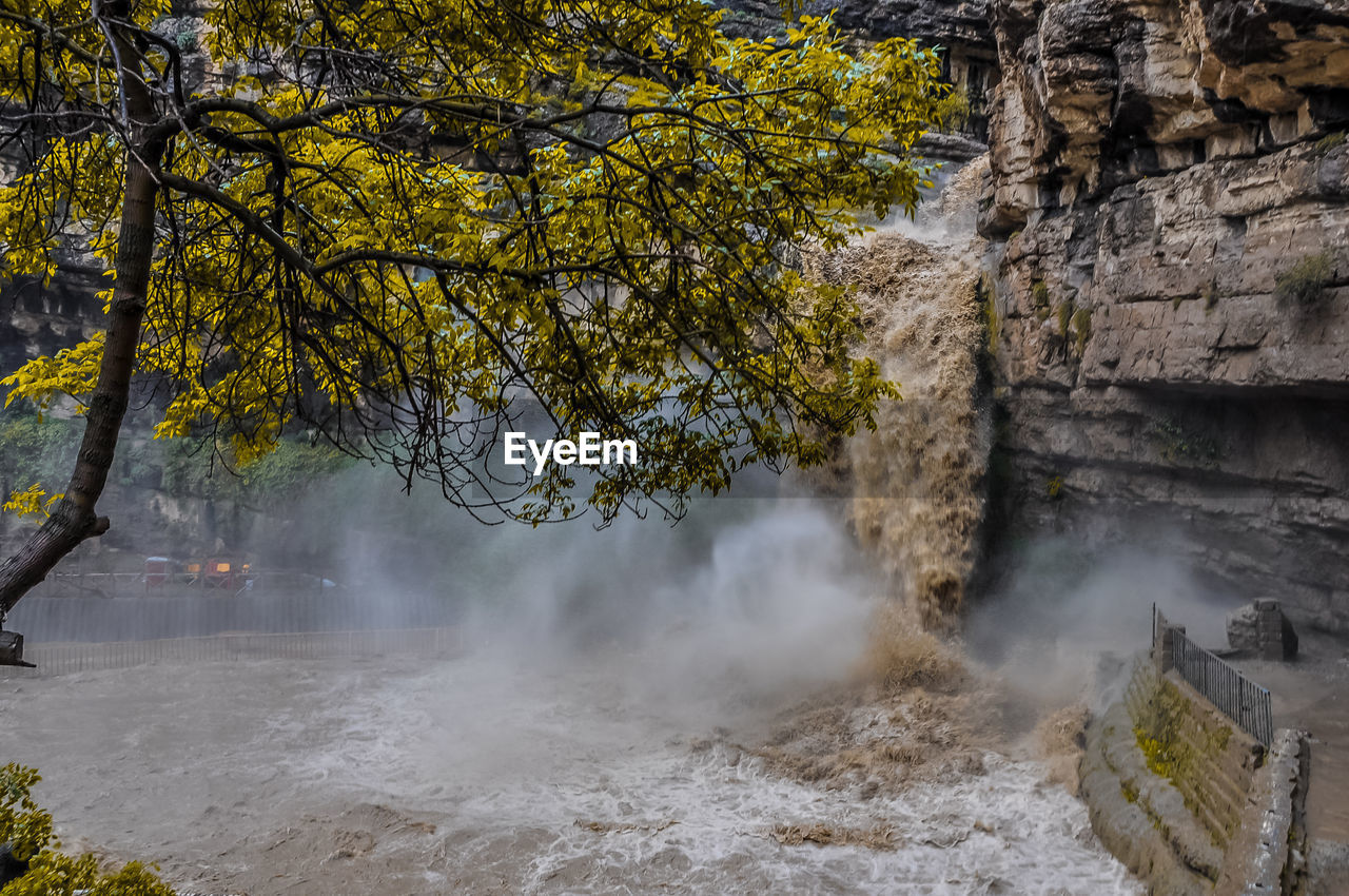 tree, plant, beauty in nature, water, nature, scenics - nature, no people, day, tranquil scene, outdoors, tranquility, motion, land, non-urban scene, smoke - physical structure, architecture, growth, built structure, power in nature, flowing water