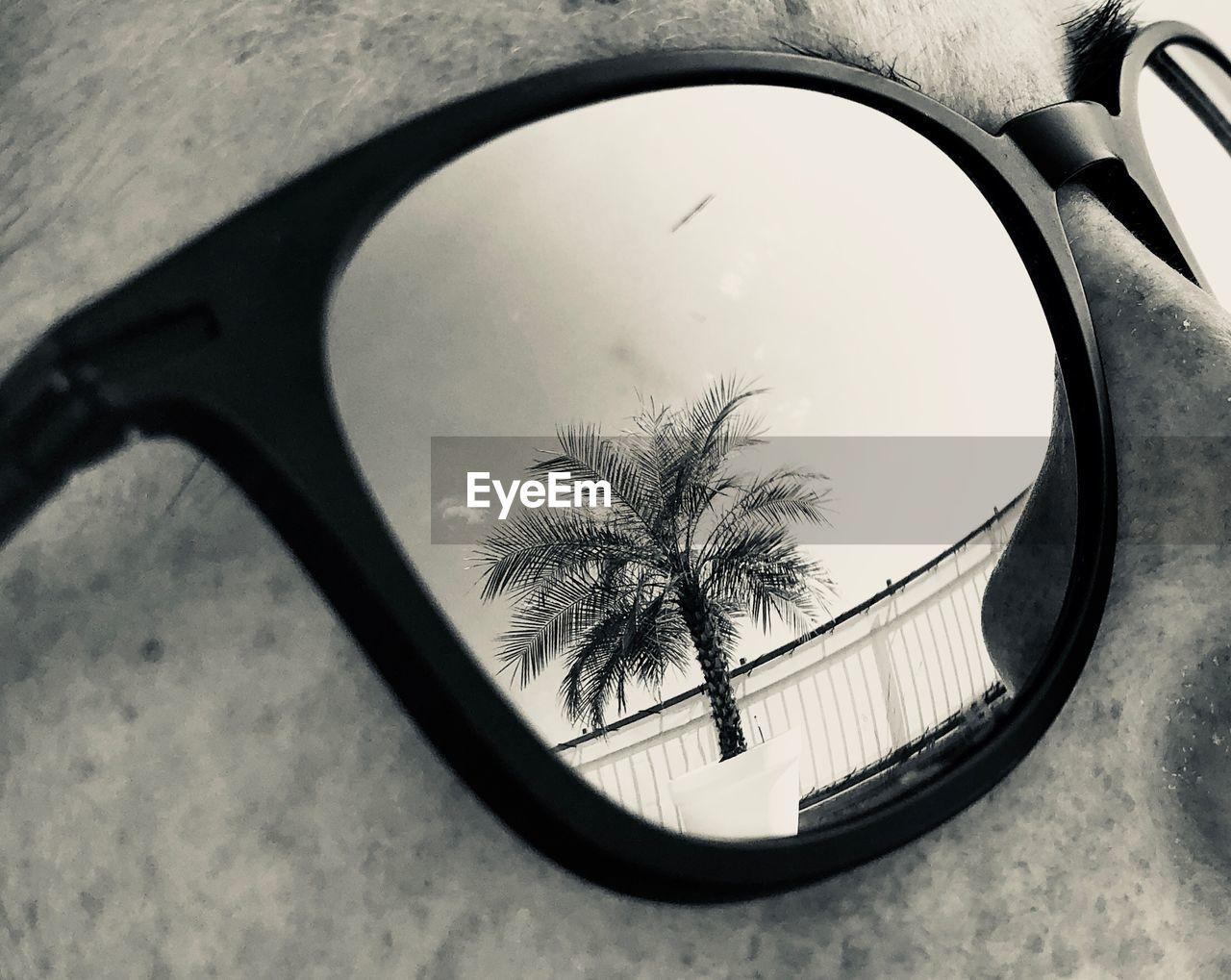 Reflection Of Sunglasses