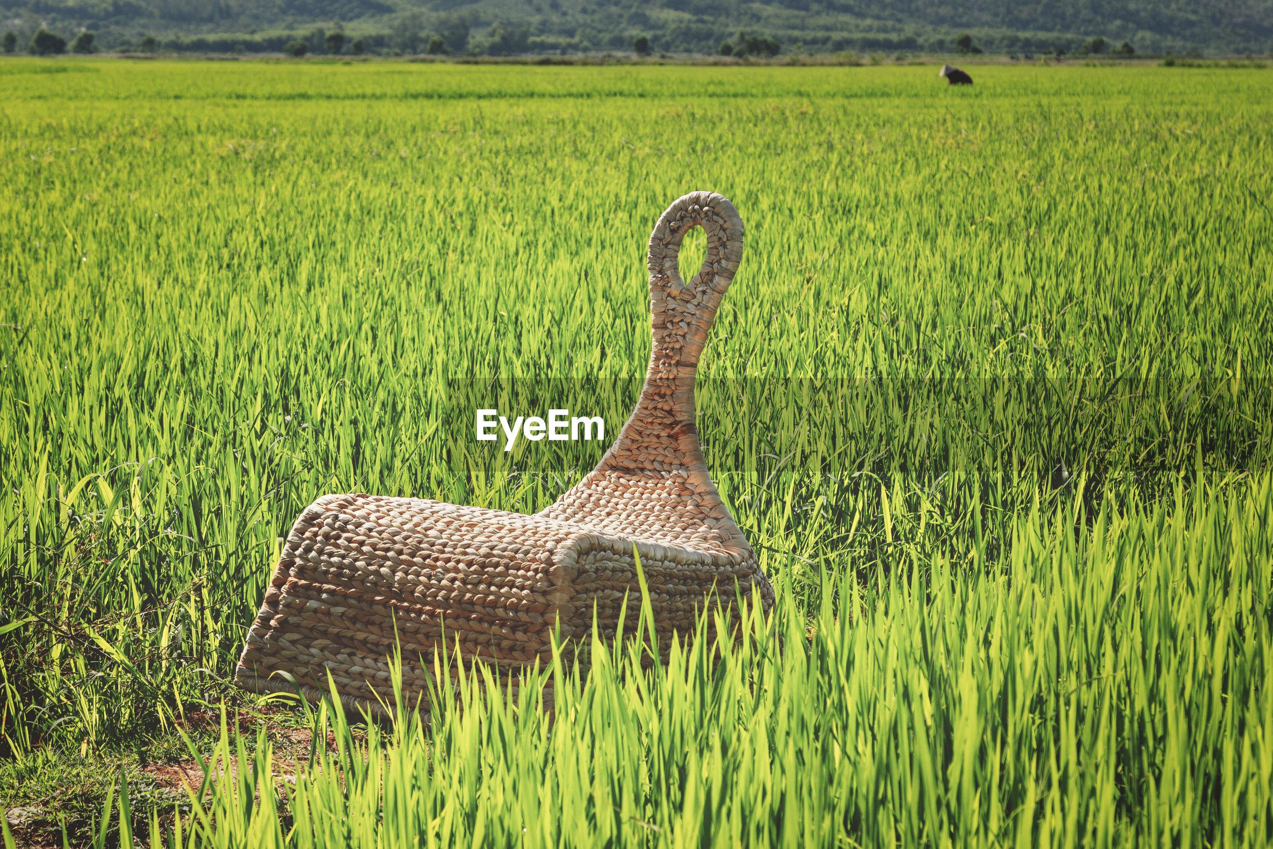 HAY BALES IN FARM