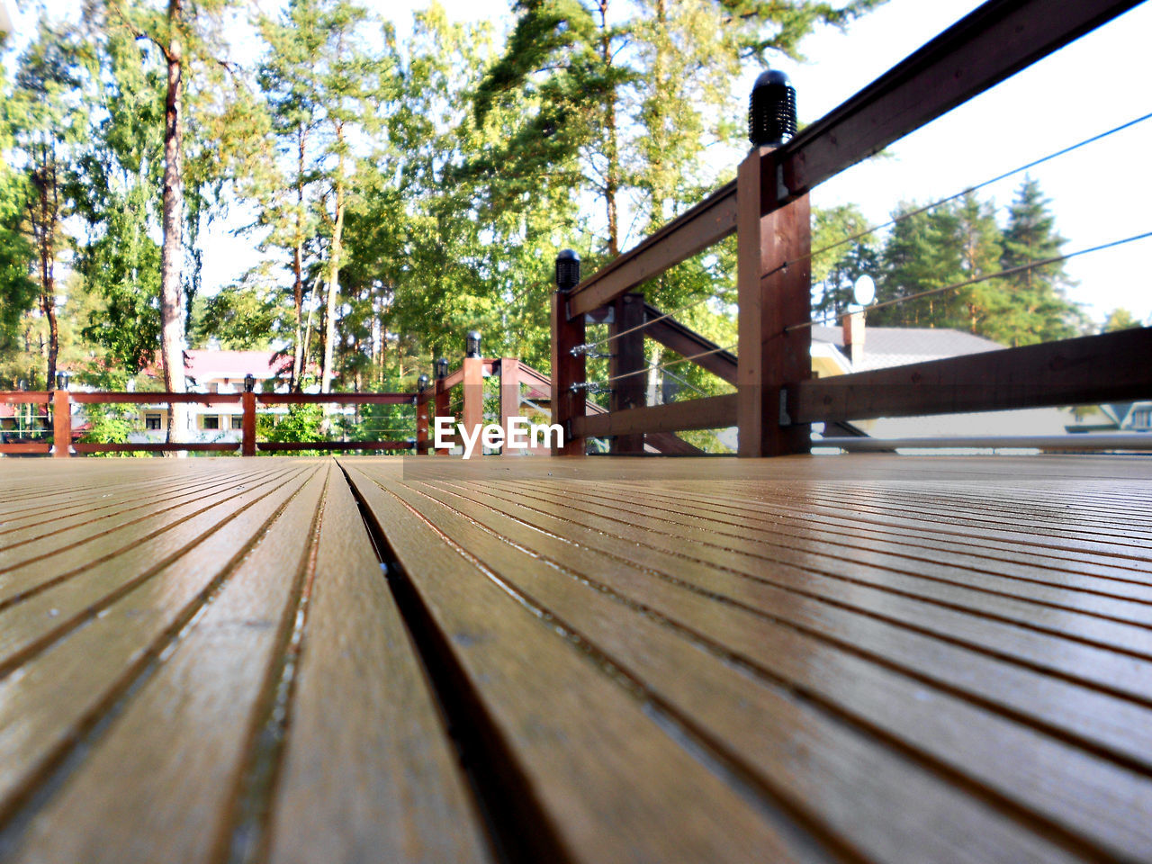 railing, wood - material, tree, day, footbridge, no people, wood paneling, outdoors, close-up, nature