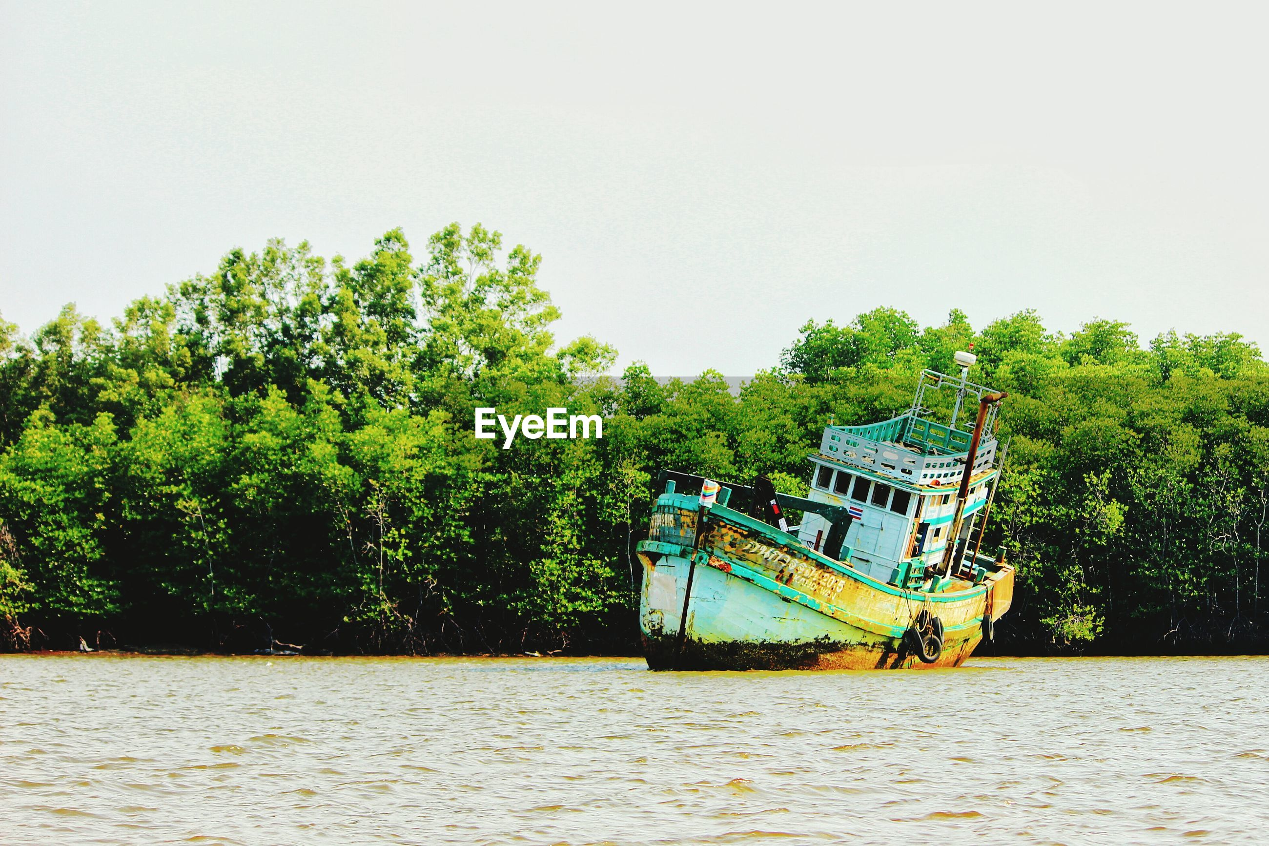 Abandoned boat by mangrove trees on river against clear sky