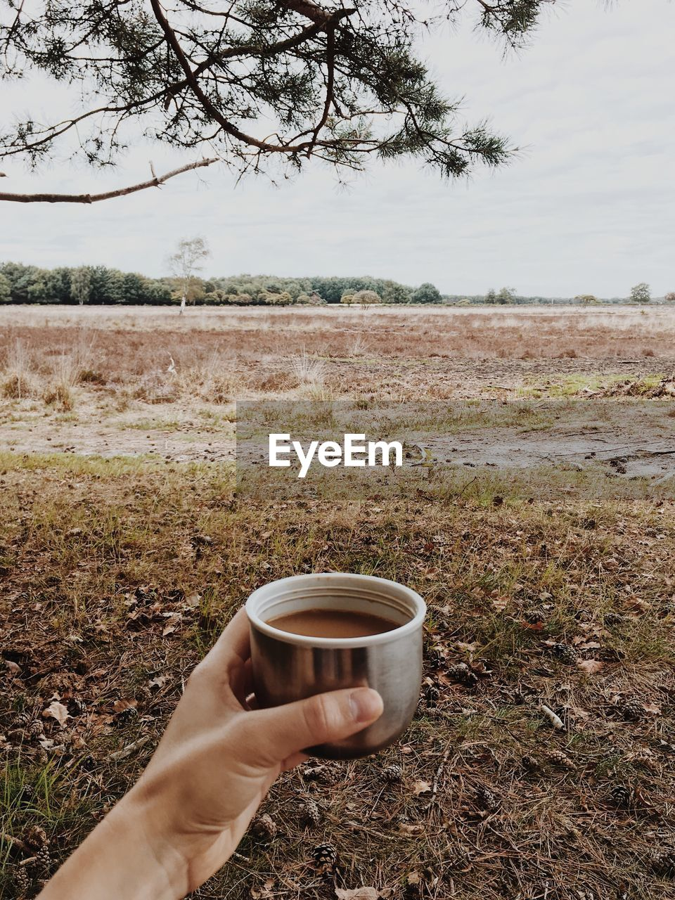 Cropped hand of person holding coffee cup on land