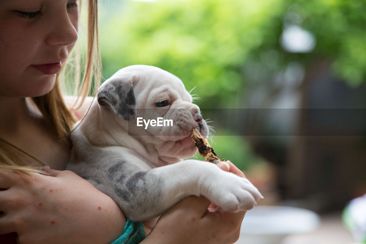 Close-Up Of Girl Holding Dog
