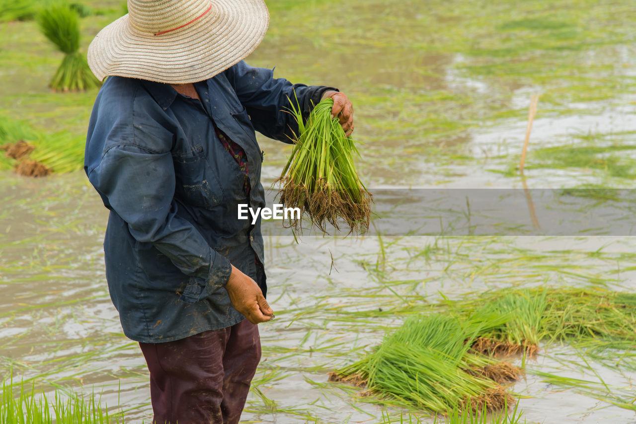 Woman Working In Farm