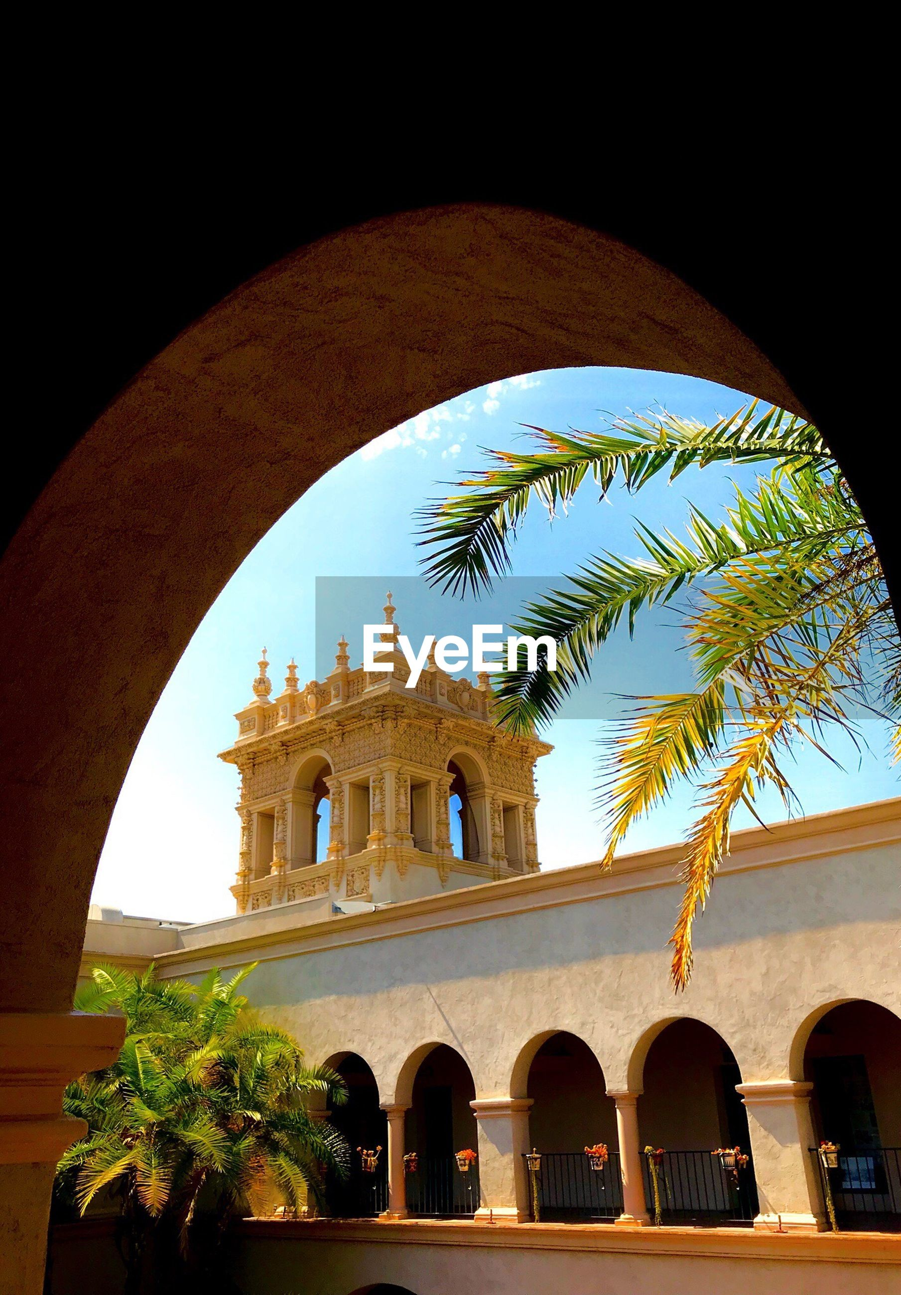 LOW ANGLE VIEW OF PALM TREES AGAINST SKY SEEN THROUGH ARCH