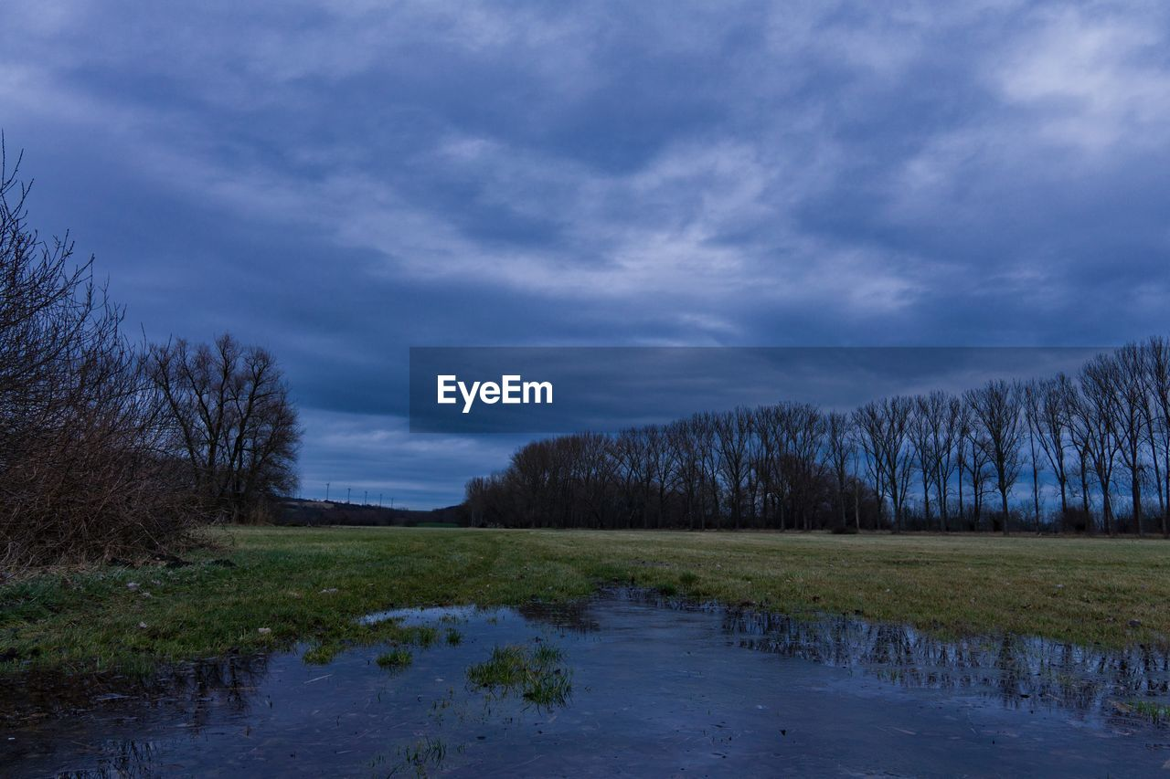 cloud - sky, sky, plant, tranquil scene, tranquility, tree, scenics - nature, beauty in nature, water, no people, environment, nature, non-urban scene, grass, landscape, land, day, lake, swamp