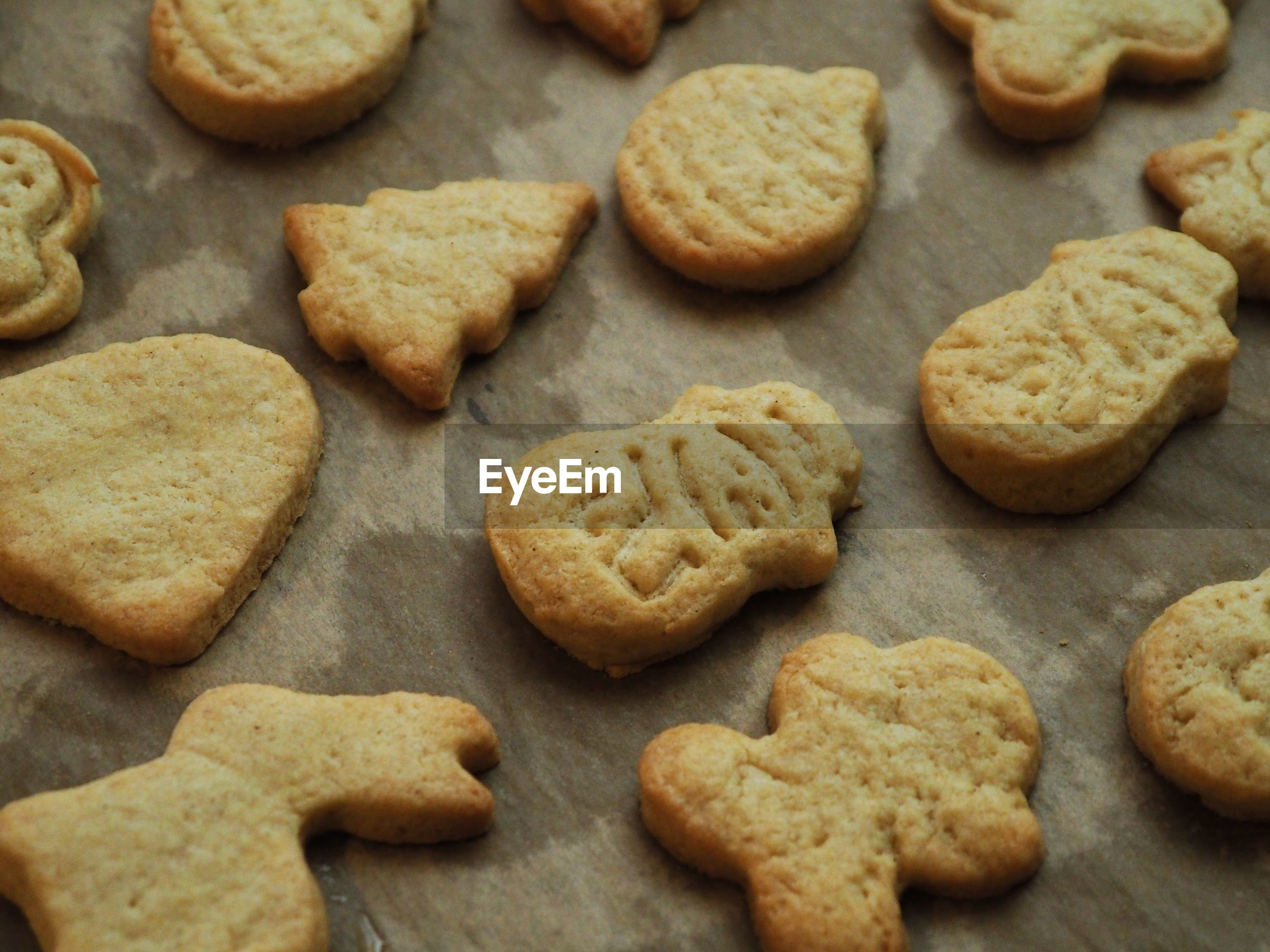 HIGH ANGLE VIEW OF COOKIES IN TRAY