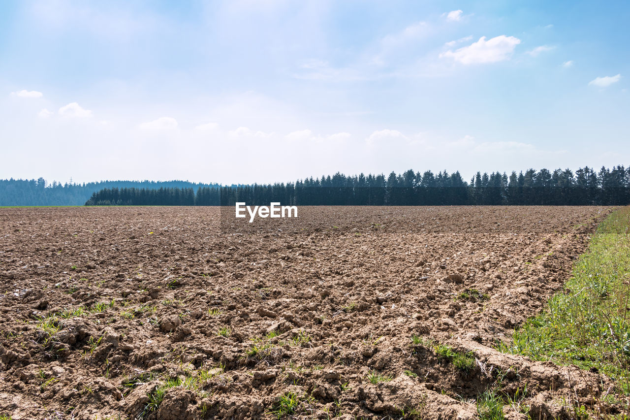 field, landscape, land, sky, environment, agriculture, cloud - sky, tranquil scene, tranquility, plant, rural scene, nature, scenics - nature, farm, beauty in nature, day, growth, no people, tree, plowed field, plantation