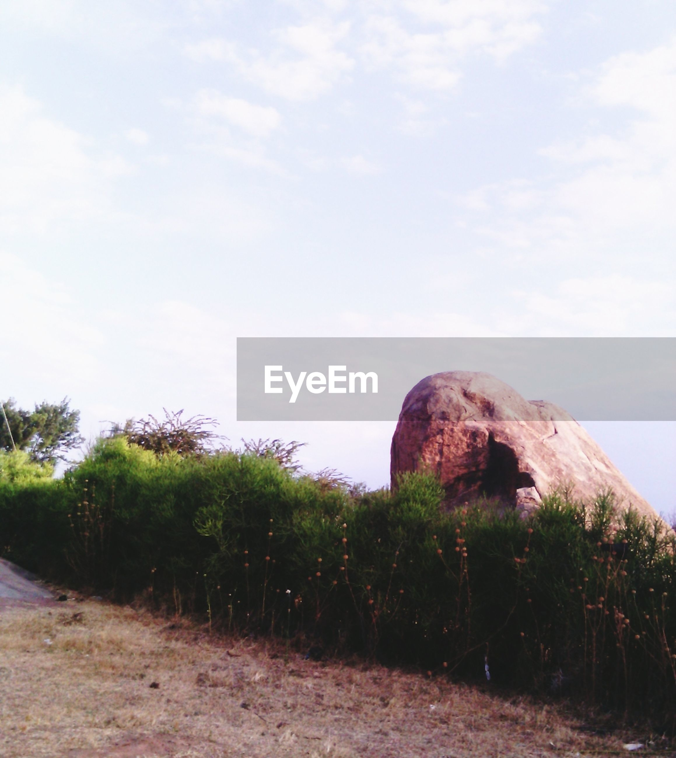 sky, tree, landscape, built structure, tranquility, architecture, cloud - sky, tranquil scene, nature, cloud, history, rock formation, grass, rock - object, old ruin, plant, day, scenics, hill, non-urban scene