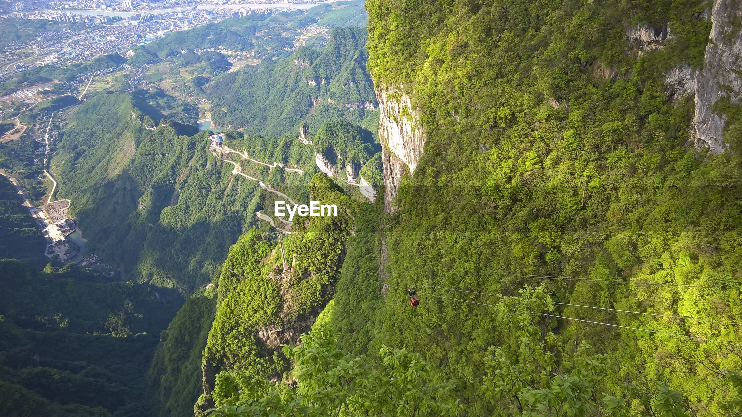 HIGH ANGLE VIEW OF TREE MOUNTAINS