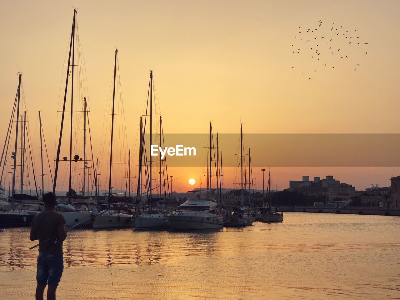 sunset, sky, water, nautical vessel, transportation, mode of transportation, nature, orange color, sailboat, mast, pole, beauty in nature, waterfront, sea, moored, silhouette, scenics - nature, bird, outdoors, yacht, marina
