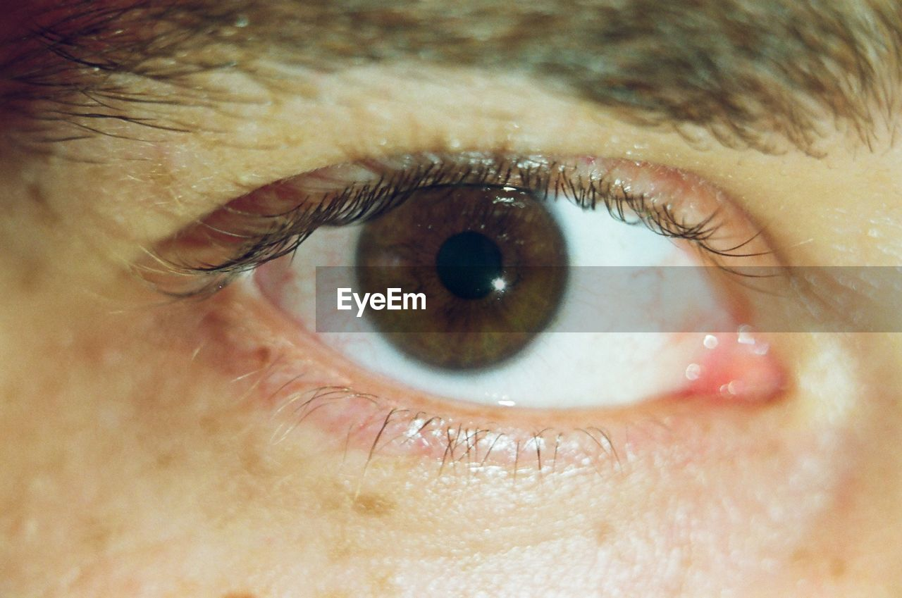 eyesight, sensory perception, human eye, human body part, eye, eyelash, one person, real people, body part, close-up, eyeball, extreme close-up, portrait, unrecognizable person, skin, human skin, macro, men, looking at camera, iris - eye, eyebrow, human face, iris, eyelid