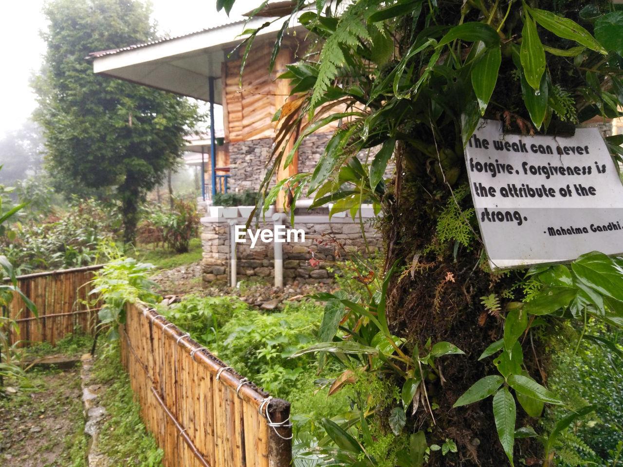 Quotes on trees @ Ravangla Sikkim
