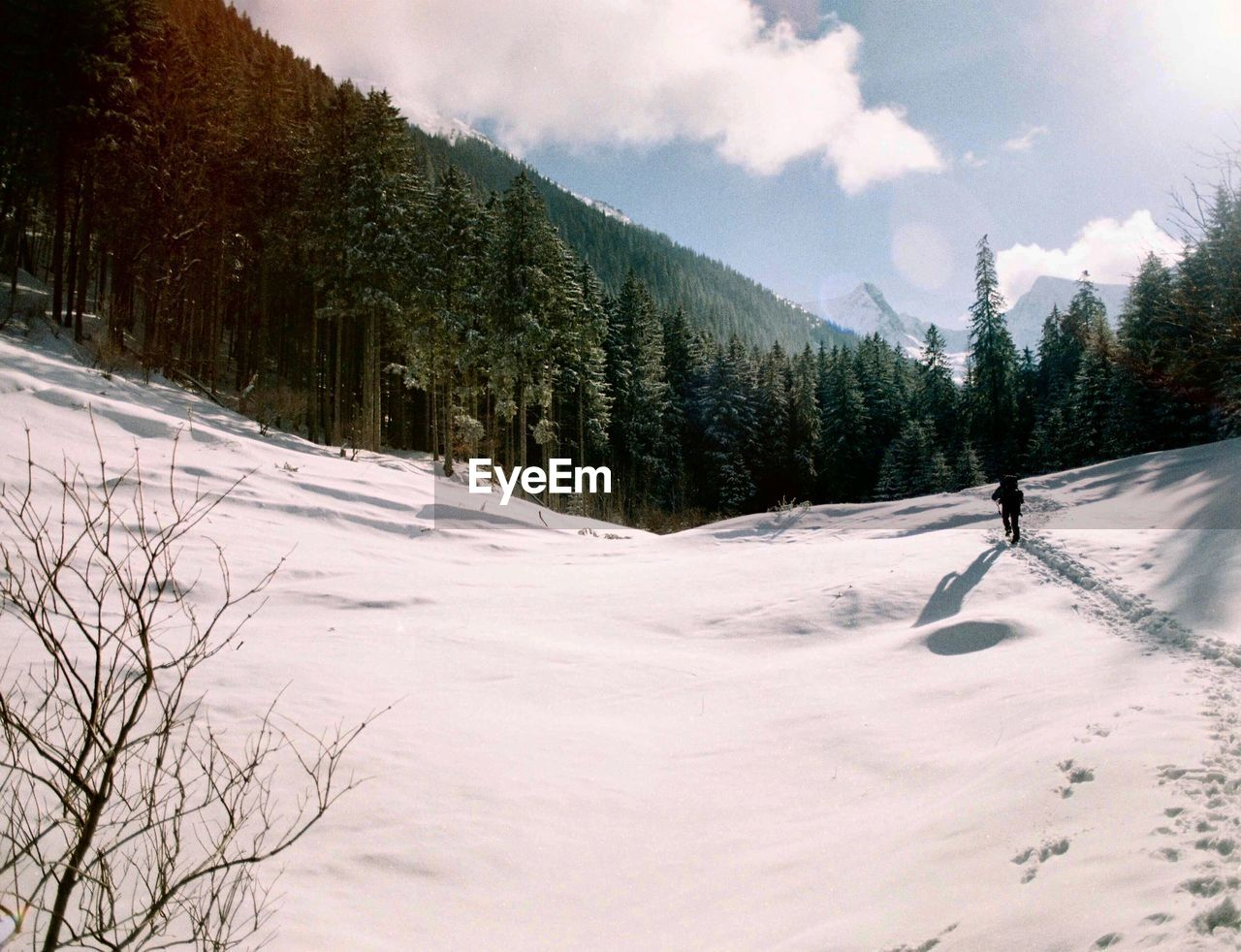 snow, cold temperature, winter, tree, plant, sky, beauty in nature, mountain, nature, scenics - nature, land, environment, day, winter sport, cloud - sky, non-urban scene, leisure activity, covering, landscape, outdoors, snowcapped mountain