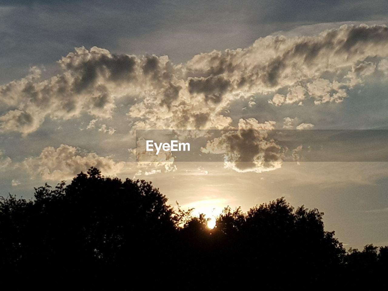 Tree Forest Silhouette Sunset Storm Cloud Defocused Sky Cloud - Sky Streaming Treetop Shining