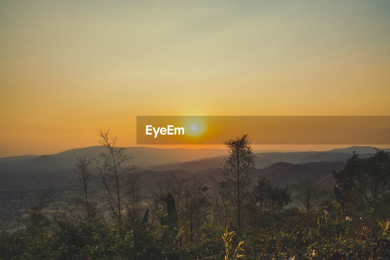 sky, beauty in nature, scenics - nature, sunset, tranquility, tranquil scene, sun, plant, landscape, orange color, environment, mountain, non-urban scene, idyllic, no people, nature, tree, mountain range, sunlight, land, outdoors