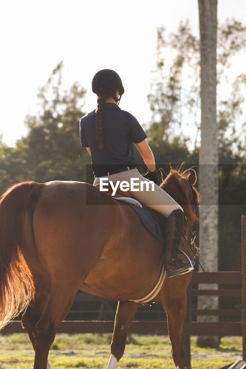 Rear View Of Female Jockey Riding Horse