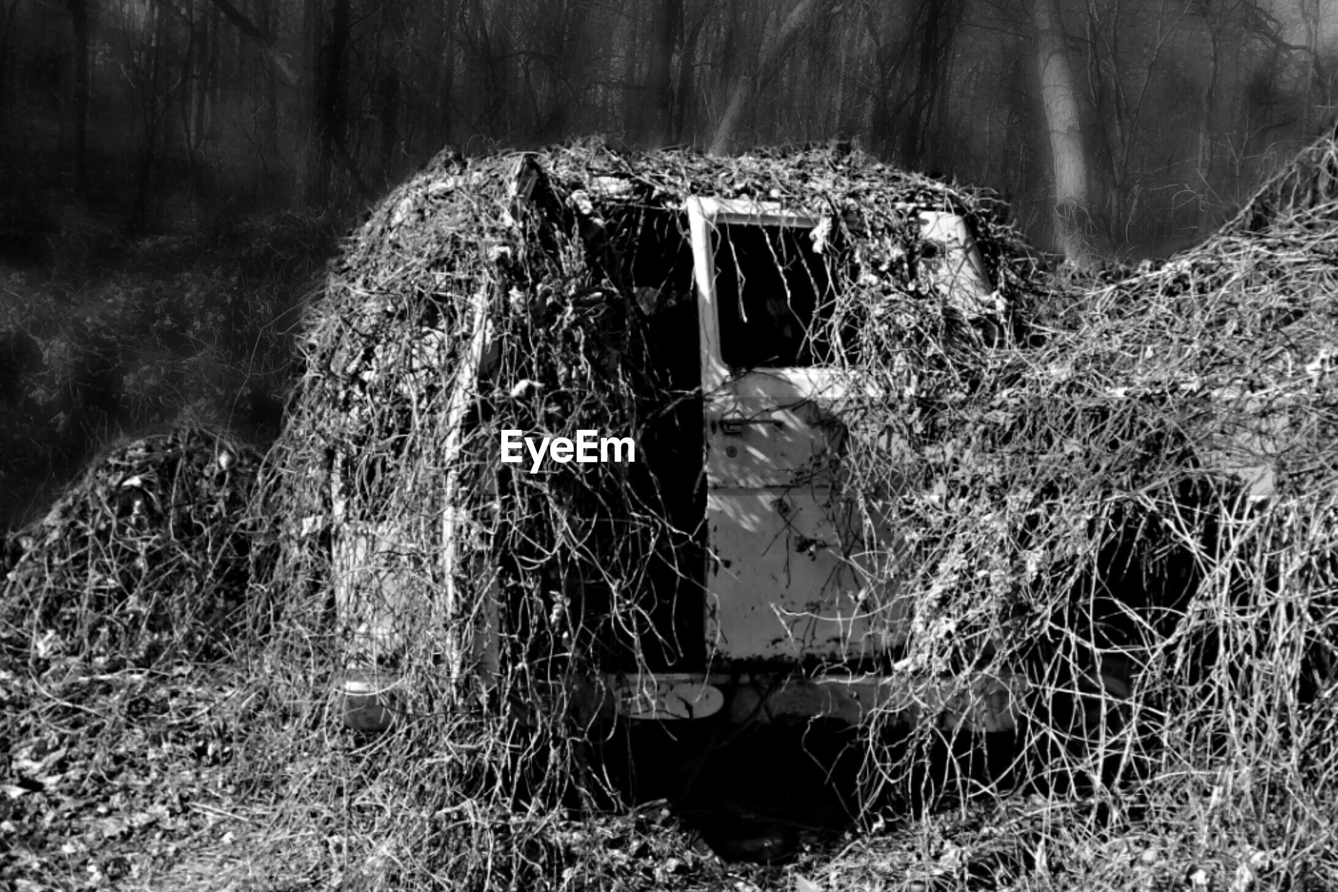abandoned, damaged, water, grass, obsolete, run-down, nature, old, deterioration, house, tranquility, day, broken, destruction, plant, rock - object, outdoors, no people, tranquil scene, built structure