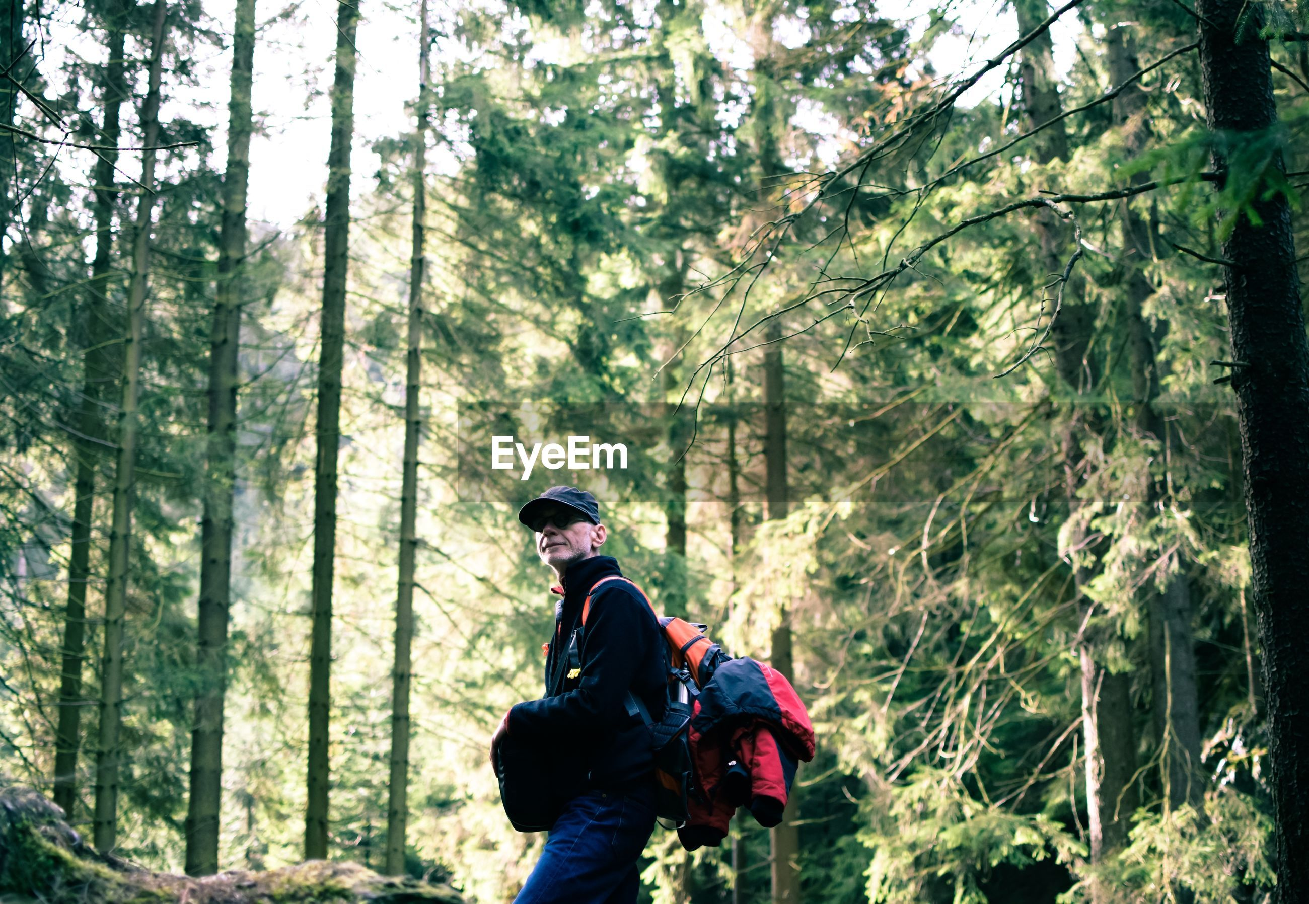 Side view of backpacker standing in forest