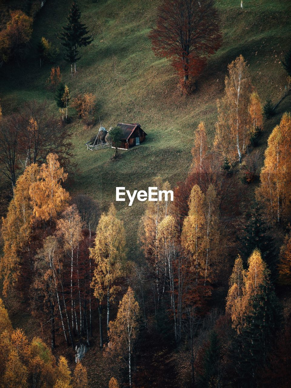 Rural autumn landscape in the carpathian mountains,romania,transylvania,romania.