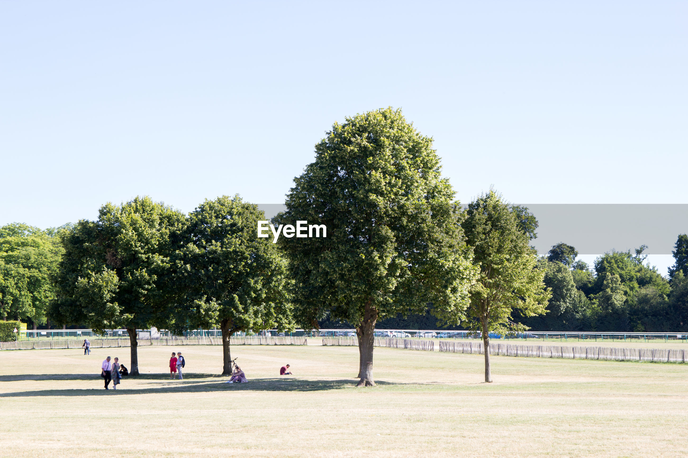 People in park against clear sky