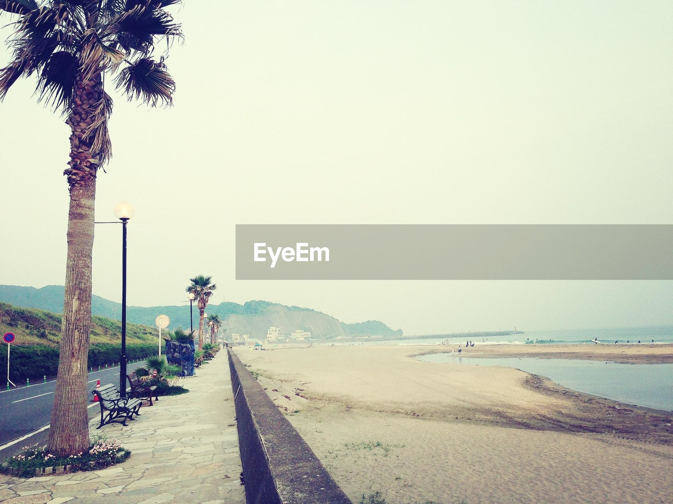 sea, beach, clear sky, horizon over water, sand, the way forward, water, tranquil scene, tranquility, copy space, shore, scenics, beauty in nature, nature, tree, palm tree, footpath, incidental people, idyllic, coastline