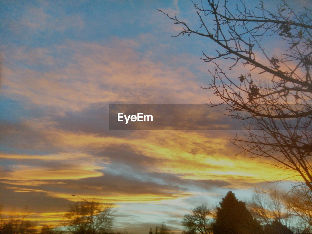 sunset, sky, beauty in nature, nature, tree, scenics, cloud - sky, low angle view, silhouette, tranquil scene, tranquility, bare tree, no people, outdoors, branch, day
