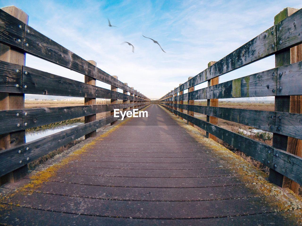 Birds flying over wooden footbridge