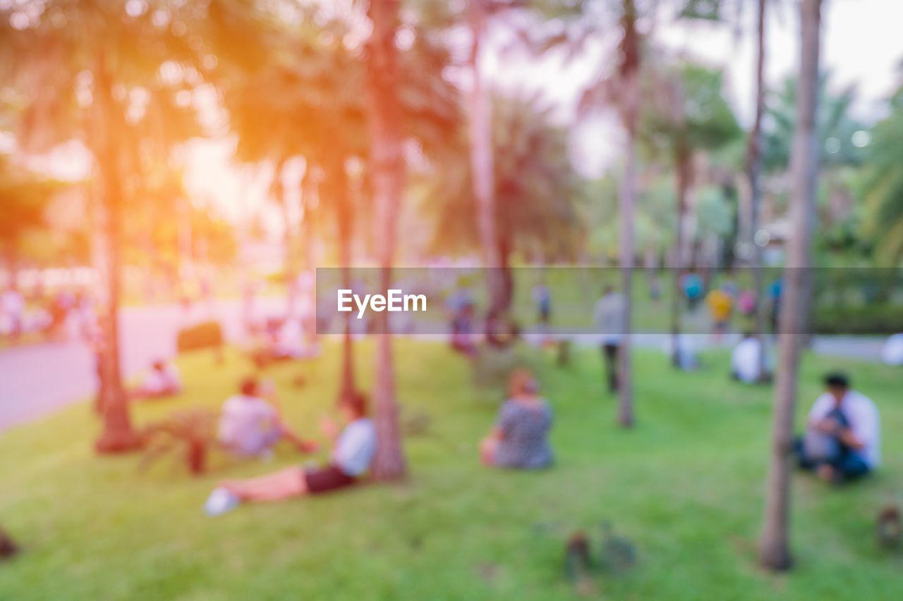 Defocused people at park