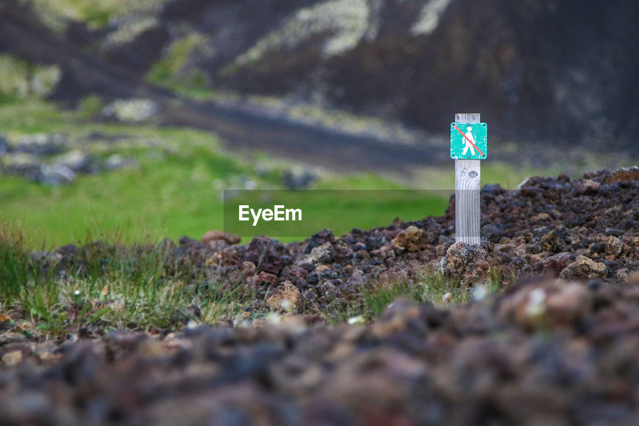 guidance, selective focus, land, no people, nature, day, plant, field, sign, communication, direction, outdoors, grass, close-up, arrow symbol, solid, architecture, green color, tree, rock, surface level