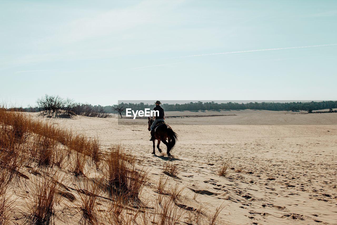 Rear view of man riding horse at desert
