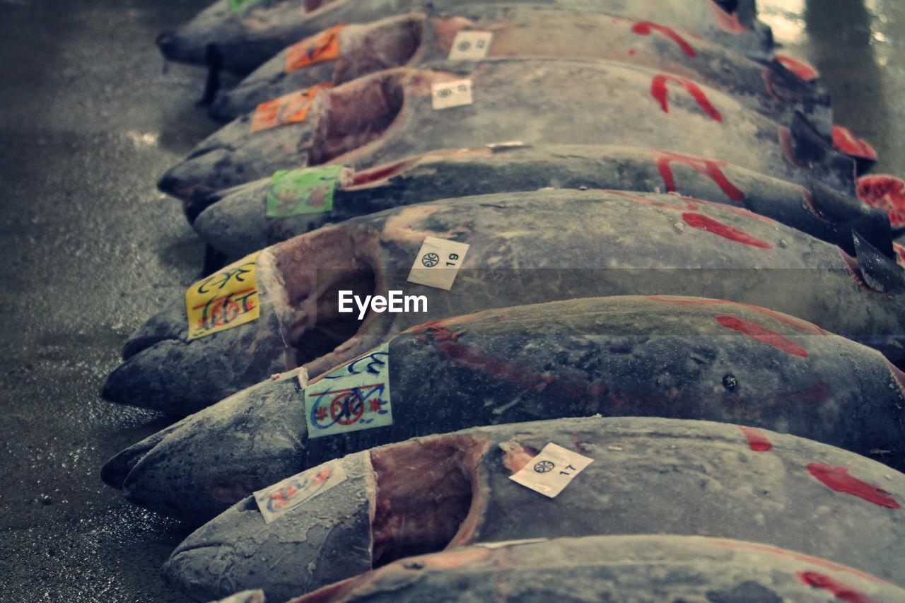 Tuna Fish For Sale At Market