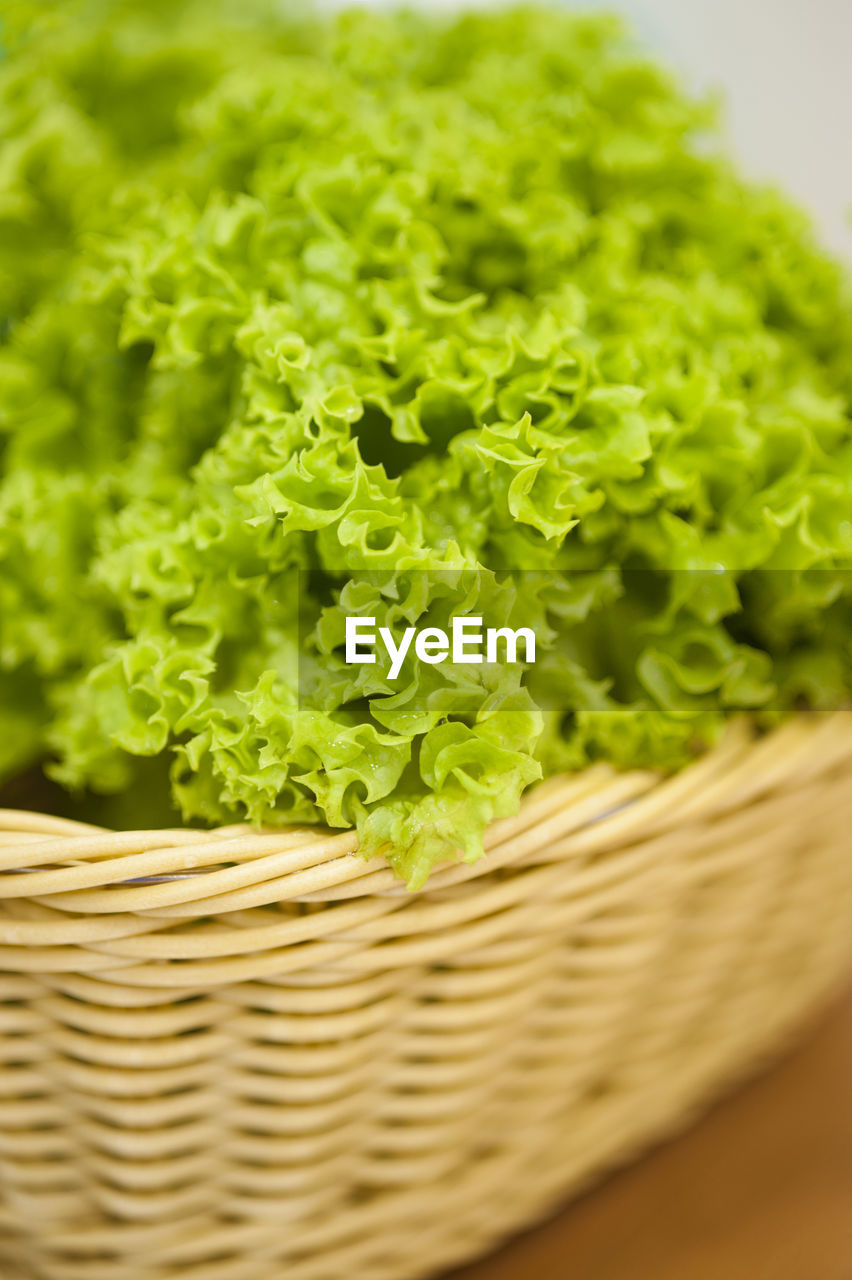basket, food and drink, green color, food, healthy eating, freshness, vegetable, close-up, indoors, no people, day