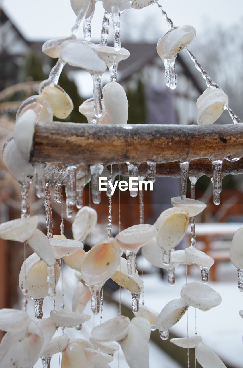 focus on foreground, close-up, no people, food and drink, indoors, motion, day, household equipment, selective focus, metal, white color, water, food, freshness, business, hanging, ice, sweet food, icicle