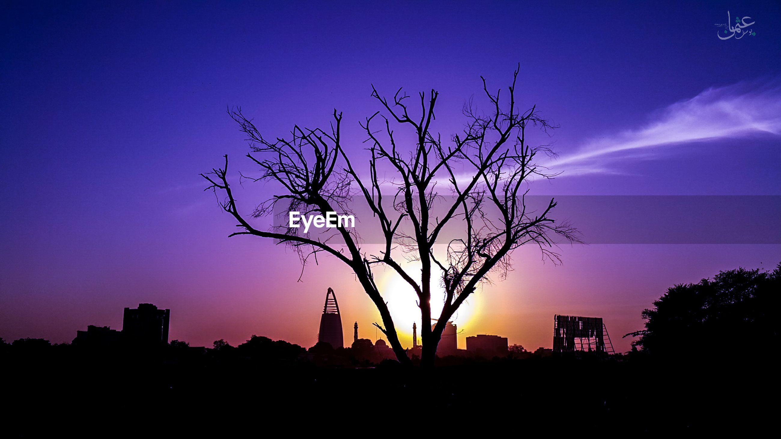 sunset, silhouette, architecture, tree, city, building exterior, sky, dusk, bare tree, built structure, no people, outdoors, nature, skyscraper, cityscape, growth, beauty in nature