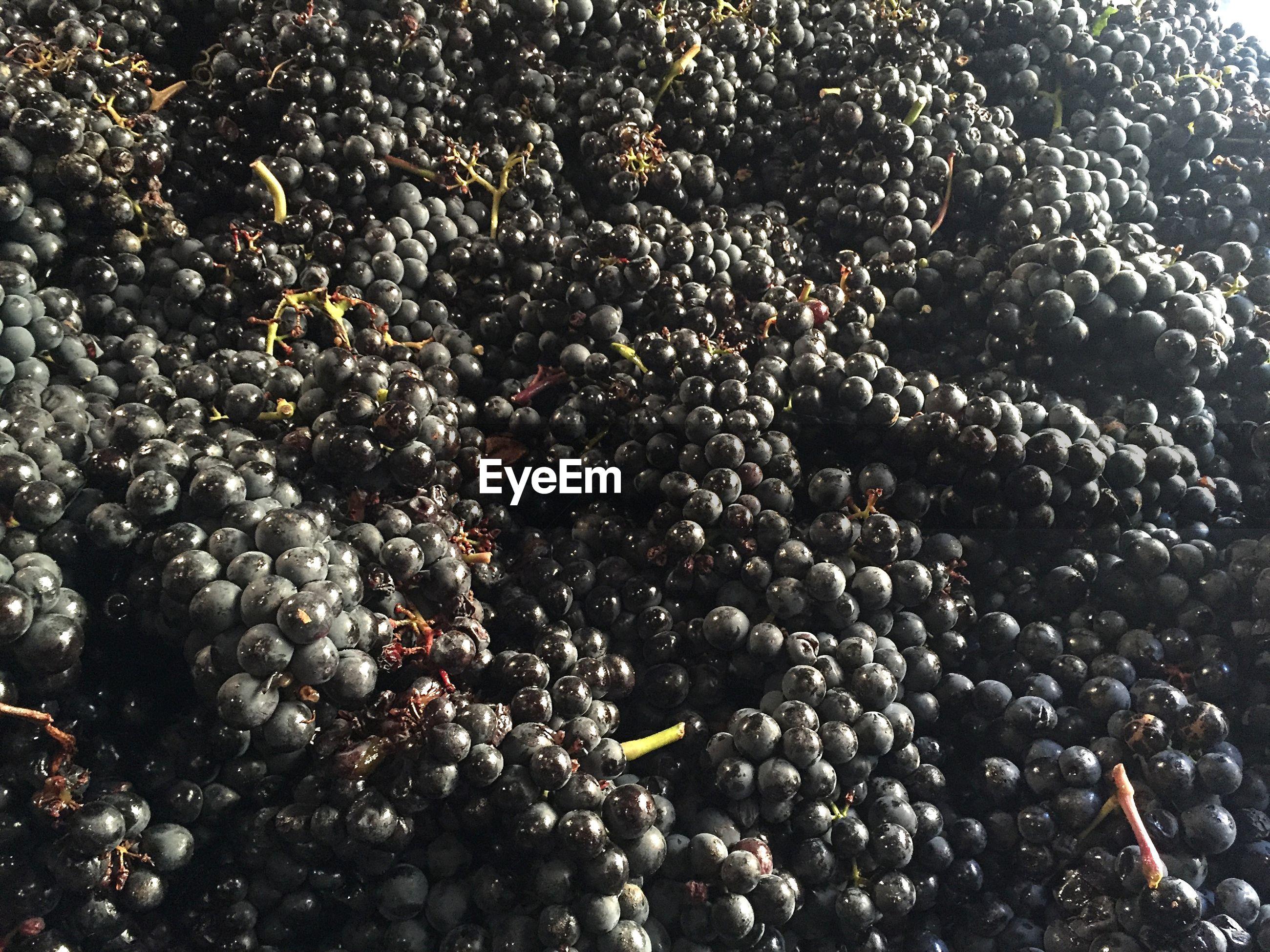 Full frame shot of grapes at market for sale