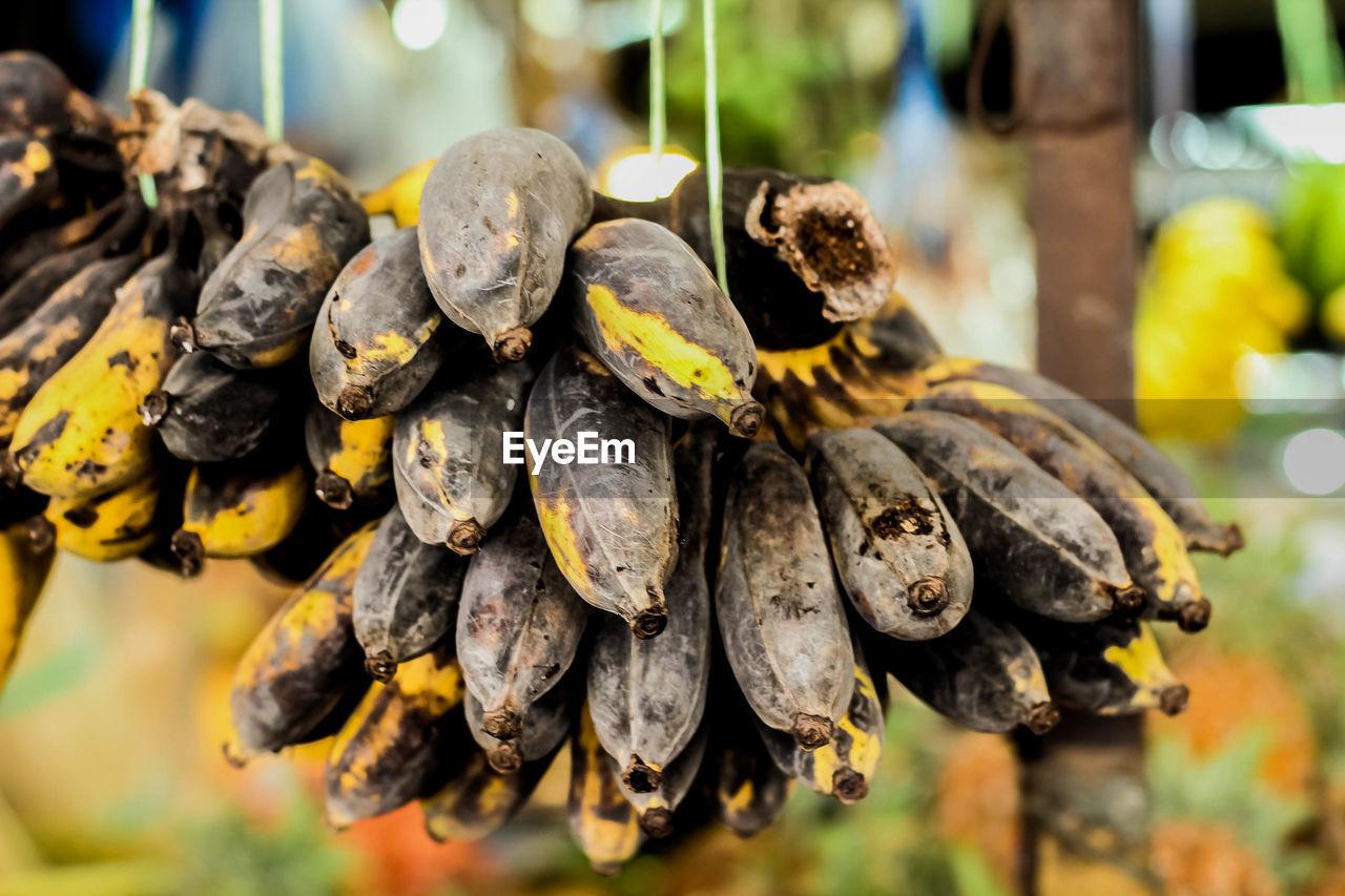 Close-up of ripe bananas